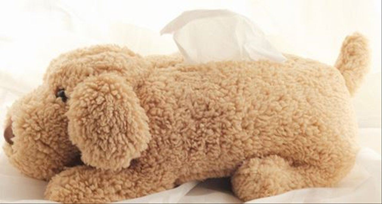 Picture Of Yuri On Ice Brown Dog Poodle Tissue Box UNOFFICIAL