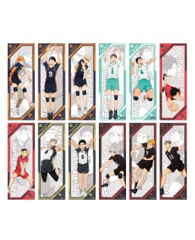 Haikyuu!! To The Top Ensky Goods Vol. 3 Character Poster 2 Piece BLIND PACKS
