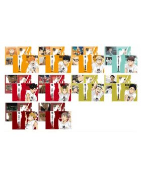 Haikyuu!! Joint Training Practice 2021 Jump Shop Goods Clear File Set